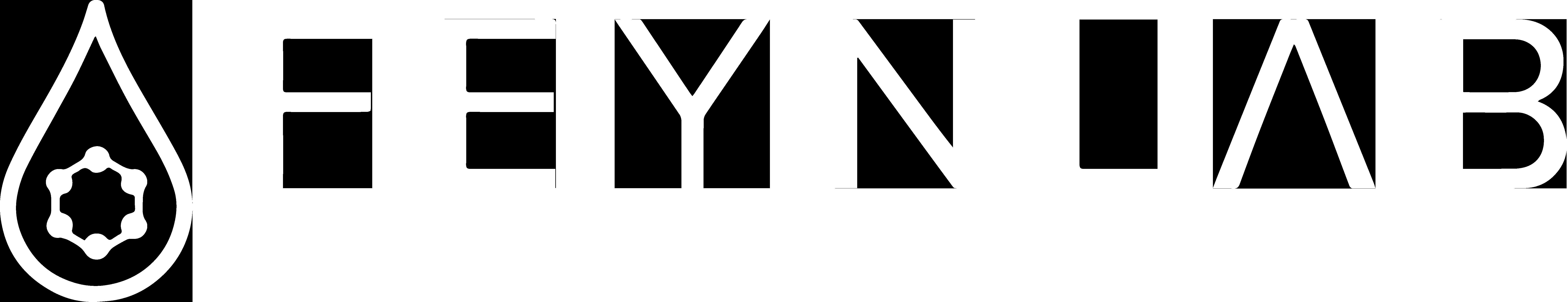 FEYNLAB MEA